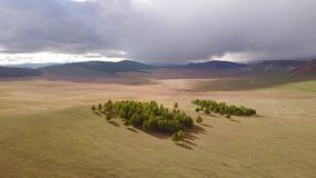 Drone view of Mongolian landscape. stock video footage
