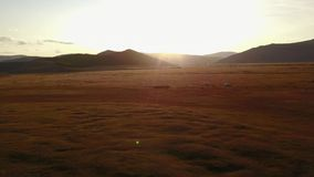 Drone view of Mongolian landscape. stock footage