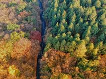 Drone view of a road and forest stock photography