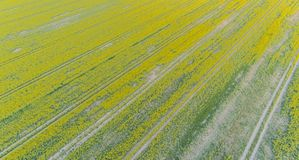 Drones flight and aerial view over a field.  stock image