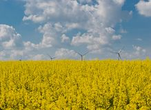 Drones flight and aerial view over a field. In Germany royalty free stock image