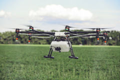 Drones spraying pesticides to grow potatoes. Industrial agriculture and smart farming concept royalty free stock image