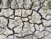 droog stock afbeelding
