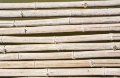 Droog bamboe Royalty-vrije Stock Afbeeldingen