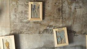 Droog bladeren en bloemen in omlijsting op muur stock footage