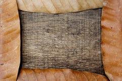 Droog bladeren met oude gebarsten houten achtergrond Royalty-vrije Stock Fotografie