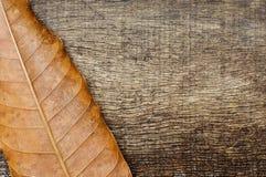 Droog bladeren op de oude houten achtergrond Royalty-vrije Stock Fotografie