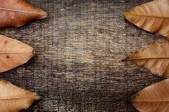 Droog bladeren op de oude houten achtergrond Stock Foto