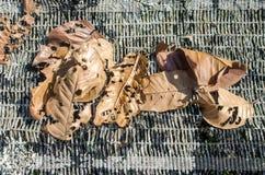 Droog bladeren op korstmos Stock Foto's