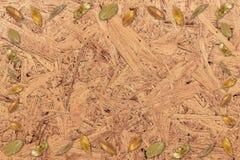 Droog bladkader op houten Gerecycleerde doosbagasse royalty-vrije stock afbeelding