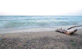 Droog die drijfhout uit water door de golven wordt gewassen Meer Baikal, Sukhaya-Baai Lange Blootstelling Royalty-vrije Stock Afbeeldingen