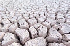 Droog gebarsten grijze witte modder vormt patronen bij de bodem van een rivierbed stock afbeeldingen