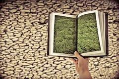 Droog gebarsten land, Gras in verleden Stock Afbeelding