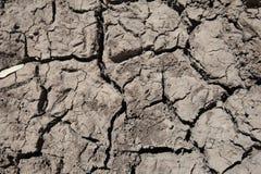 Droog gebarsten modder vormt patroon stock afbeeldingen