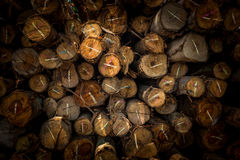 Droog gehakt brandhout Stock Foto