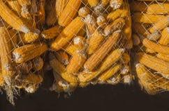 Droog graan in het hangen van zakken stock afbeeldingen