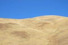 Droog gras en blauwe hemel Royalty-vrije Stock Afbeeldingen