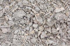 Droog grond en blad Stock Afbeeldingen