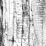 Droog hout royalty-vrije illustratie