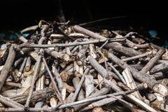 Droog hout voor brandwond in koele nacht stock fotografie