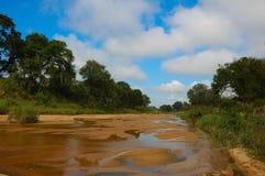 Droog lopen van het rivierbed (Zuid-Afrika) Stock Afbeeldingen