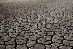 Droog moddergebied Stock Foto's