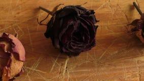 Droog nam bloem op een houten lijst toe stock footage