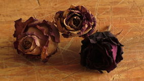 Droog nam bloem op een houten lijst, uitstekende stijl toe stock video
