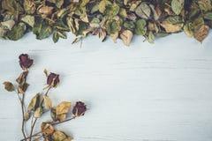 Droog nam en blad op wit houten dek met lege ruimte voor desi toe Royalty-vrije Stock Foto