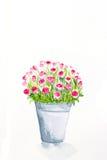 Droog nam met dalende bloemblaadjes op wit toe Royalty-vrije Stock Foto