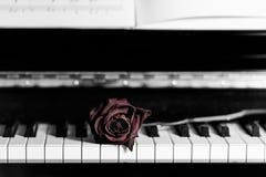 Droog nam over grote pianosleutels toe Royalty-vrije Stock Afbeeldingen
