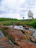 Droog rivierbed Stock Foto's