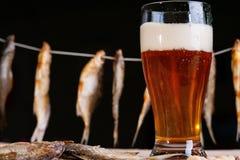 Droog vissen en bier royalty-vrije stock afbeelding