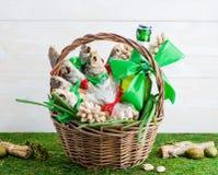 Droog vissen en bier, St Patrick ` s Dag, 23 Februari Royalty-vrije Stock Afbeelding
