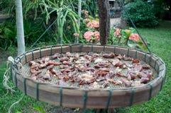 Droog vlees Royalty-vrije Stock Afbeeldingen