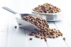 Droog voedsel voor honden of katten stock foto
