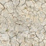 Droog woestijnland met barsten Stock Afbeelding