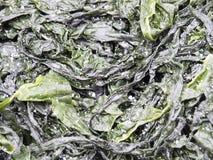 Droog zeewier, Japan stock foto