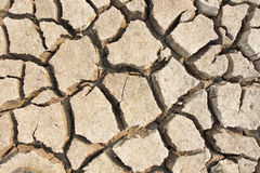 droogte stock afbeelding