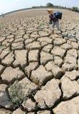 droogte in Indonesië Royalty-vrije Stock Foto's