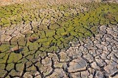 Droogteland Onvruchtbare Aarde Droog Gebarsten Aarde Gebarsten modderpatroon Stock Afbeeldingen