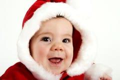Drooling sobre o Natal Foto de Stock