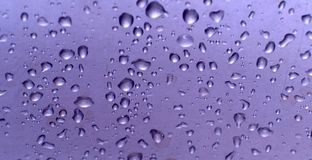 Drop. Water drops on glossy surface Stock Photography