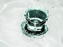 Drop. Water Stock Images