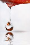 Drop of apple. Royalty Free Stock Image