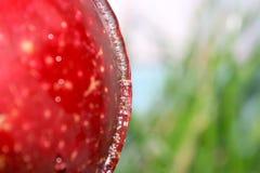 Drop of apple. Stock Photos
