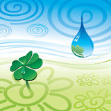 Drop & clover Royalty Free Stock Photos