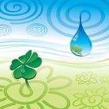 Drop & clover Royalty Free Stock Photos