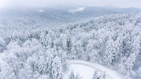 Drop down of a road through snow covered forest. Winter landscape from above Royalty Free Stock Image