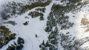 Drop down view of snowy meadow. Stock Images